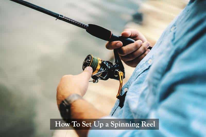 How To Set Up a Spinning Reel: An Ultimate Guide