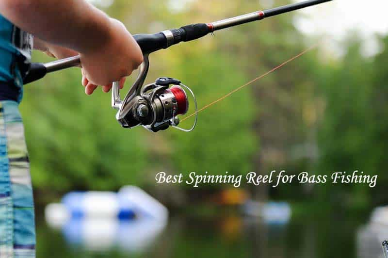 Best Spinning Reel for Bass Fishing: Reviews and Buying Guide